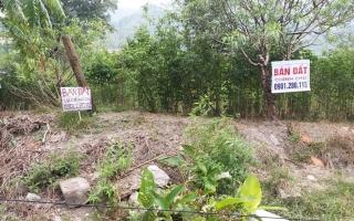 """Đất đặc khu """"sốt"""" xình xịch, Quảng Ninh chỉ đạo siết chặt quản lý"""