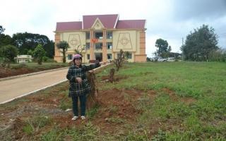 Gia Lai: Giải quyết khiếu nại về đất đai, vì sao nhiều hộ dân không đồng tình?