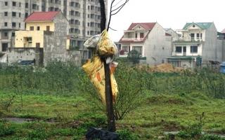 Nhếch nhác khu đô thị Cửa Tiền (Nghệ An): Sẽ xem xét xử phạt hành chính