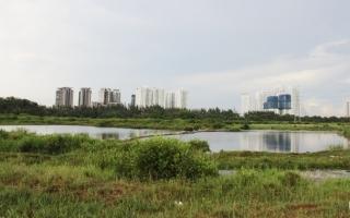 Bất động sản 24h: Nhiều thành phố lớn thực hiện thu hồi và hủy chuyển nhượng đất đai
