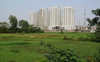 Bất động sản 24h: TP.HCM chuyển đổi hàng ngàn ha đất nông nghiệp, tín hiệu vui cho thị trường địa ốc