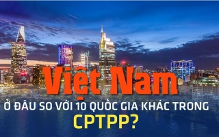 Việt Nam ở đâu so với 10 quốc gia khác trong CPTPP?