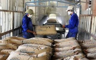 11 tháng, kim ngạch xuất khẩu xi măng đạt 1,12 tỉ USD