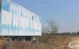 Thủ tướng yêu cầu báo cáo kết quả thanh tra việc bán đấu giá khu dân cư Hòa Lân
