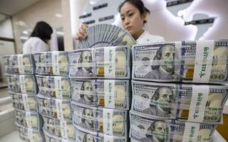 Ngân hàng Nhà nước sẵn sàng bán ngoại tệ can thiệp tỷ giá