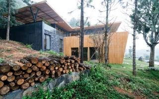 Nhà gỗ Teak giữa rừng thông