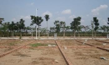 TP.HCM: Diện tích đất tối thiểu để được tách thửa là 36 m2