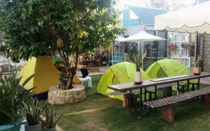 Du lịch homestay tại Đà Lạt thu hút du khách