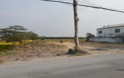 1,8tr/1m2: Đất Xưởng – Kho tại TPHCM . Đã san lấp, mặt tiền lộ giới 30m, thủ tục pháp lý rõ ràng.