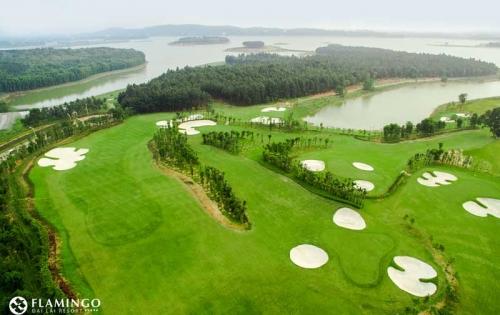 Chính sách siêu lợi nhuận khi mua bất động sản nghỉ dưỡng Flamingo – Resort Đại Lải, Vĩnh Phúc