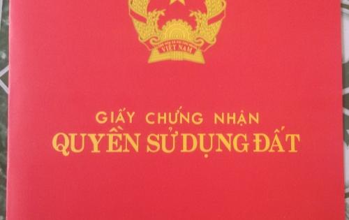Cần bán gấp 1,3 mẫu đất + hơn 2.000 cây gỗ xà cừ sổ hồng chính chủ tại Ấp 4, Bình Lộc, Long Khánh