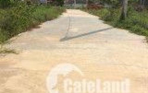 Đất nền KDC phường Long Bình Tân TP Biên Hòa giá từ 800tr/nền