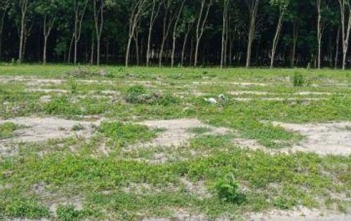 Đất nền KCN Minh Hưng 3 giá chỉ có 350tr ền.Lh:0935.611.956