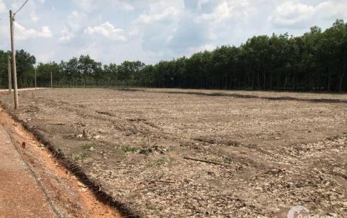cần bán đất mặt tiền trục đường lớn ngay quốc lộ 14 Tân Thành, Đồng Xoài
