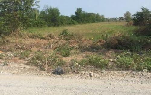 Bán đất đường Đa Phước,giá 250 triệu/nền cách chợ Phong Phú 1km