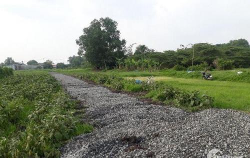 Bán đất mặt tiền Kênh Trung Ương DT 4x13m giá 270tr sổ chính chủ xây dựng ngay khi mua đất