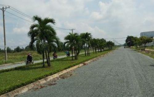 Đất Vàng vị trí đẹp Tại TPHCM – Điểm 10 Cho Vị trí. – đất Bình Chánh