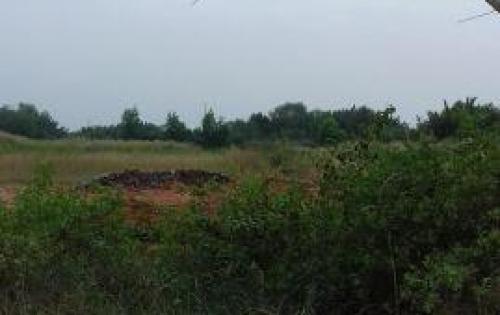 Đất mặt tiền đường Hà Quang Vóc, Bình Khánh, Cần Giờ, Tp.HCM giá rẻ - 0938752829 ( Hùng )