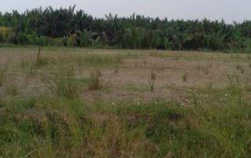 Đất KDC Bình Thạnh, mặt tiền đường Hà Quang Vóc, Bình Khánh - 0938752829 ( Hùng )