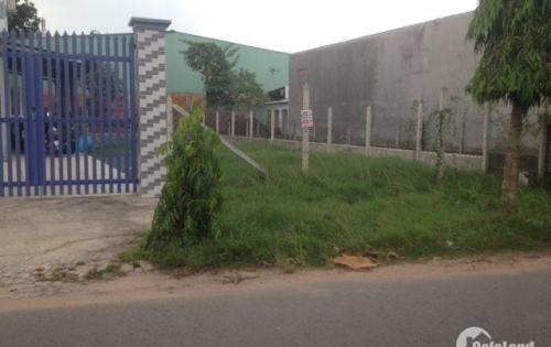 Đất thổ cư MT đường Liêu Bình Hương tại tân thông hội Củ Chi, SHR, 850TR