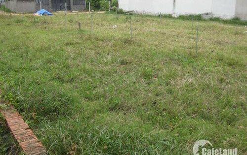 Chính chủ cần bán lô đất ngay đường Liêu Bình Hương, thổ cư 100%, shr