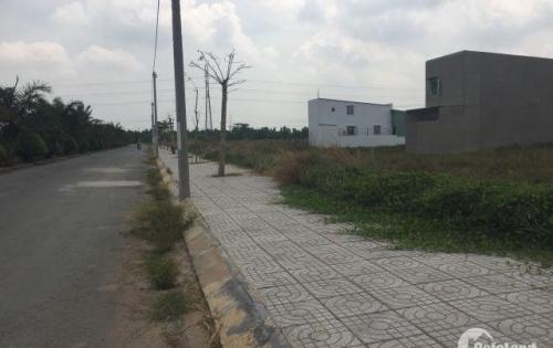 Cần tiền bán gấp đất nền 5x17m đường Trần Tử Bình gần KCN Tân Phú Trung, Củ Chi