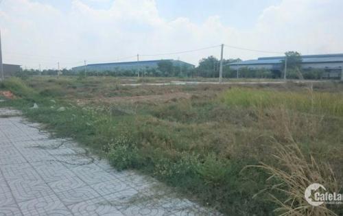 Bán đất thổ cư 100% mặt tiền đường số 11 xã Tân An Hội, Củ Chi
