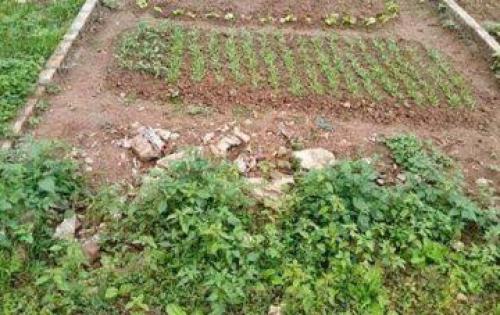 Bán đất tổ 9 Thạch Bàn-Long Biên.DT 34m2, giá 1.09 tỷ.