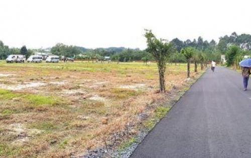 Cơ Hội Khẳng định Đẳng Cấp Đầu Tư Đất Sân Bay Long Thành SHR, Giá chỉ 7,5tr/m2