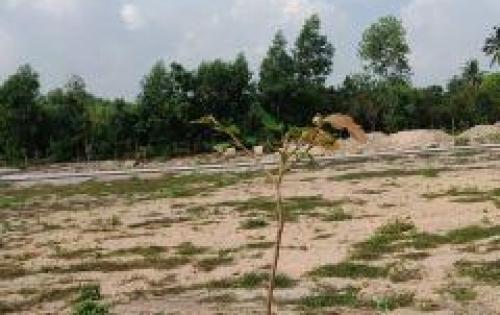 Đất nền khu dân cư Lộc An, nằm ngay nút giao quốc lộ 51, dt769