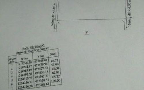 Cần bán 7000m2 đất nông nghiệp tại xã Thiện Nghiệp, TP Phan Thiết