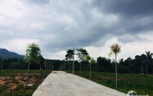 Bán gấp lô đất Búng Gội, ấp Búng Gội, Phú Quốc, quy hoạch đất ở.