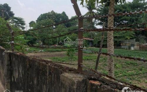 Sở hữu đất nền Đỗ Xuân Hợp, Phước Long B, Quận 9 chỉ với giá 27tr/m2