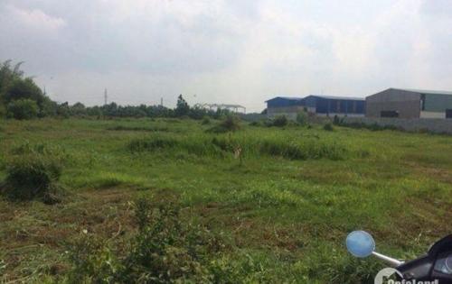 Mở bán đợt cuối đất dự án ở bình tân 250 nền. thánh toán 30% nhân nền
