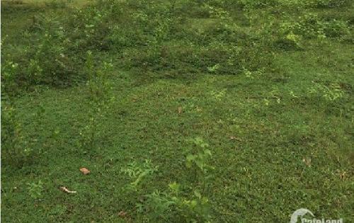 Bán đất tại Xã Đất Cuốc,Bắc Tân Uyên, Bình Dương diện tích 30000m2 giá 3.6 Tỷ