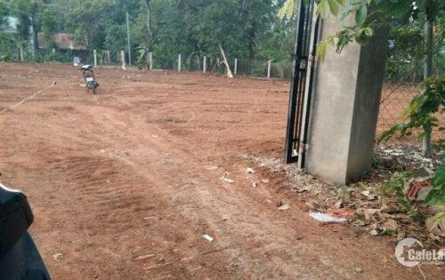 Cần tiền nên bán 4 lô đất ở Hưng Lộc Cách QL1A 250m giá gốc chủ đầu tư.