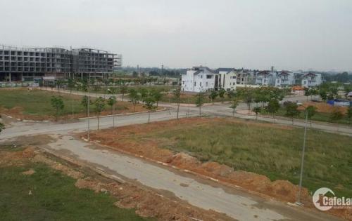 Bán đất diện tích 300m2 đường rộng 21m trục kinh doanh