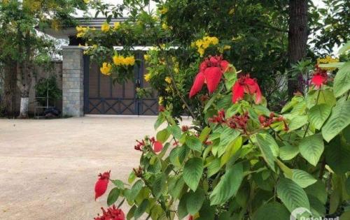 Chuyển nhượng biệt thự tại Long Thành, Đồng Nai