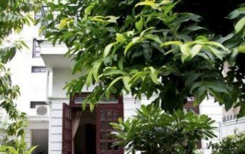 Bán Gấp Nhà 140m2 3 tầng 11,75Tỷ Hoàng Việt, Tân Bình.
