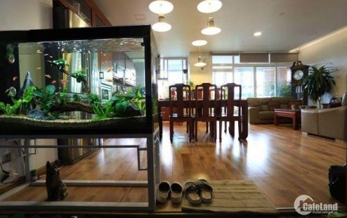 Bán Gấp Nhà 144m2 11,81 Tỷ 5PN, Trường Sa, Tân Bình.