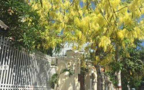 Cho thuê biệt thự villa nghĩ dưỡng ở Vũng Tàu giá rẻ liên hệ ngây để đặc phòng 0947 146 635