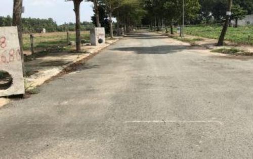 Cần bán đất gần khu công nghiệp Giang Điền, mặt đường 60m sắp thông, thổ cư 100%