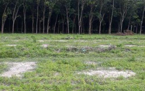 Đất nền liền kề BECAMEX giá chỉ có 350tr ền.lh: 0935.611.956