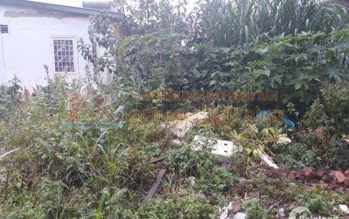 Cần bán gấp đất đường Phan Đình Phùng - Phường 2 - Đà Lạt