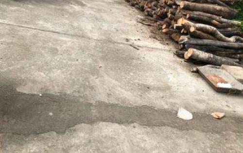 Bán đất sau trường Hoàng Hoa Thám, Diên Khánh