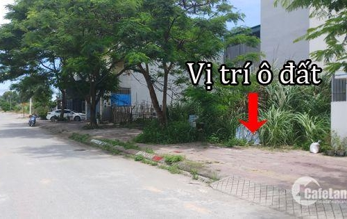 Gia Đình Cần Bán Đất Khu Đô Thị Cao Xanh Hà Khánh A Thành Phố Hạ Long
