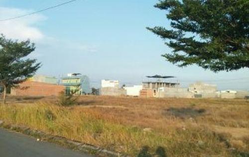 Cần bán gấp 5 lô đất nền gần KDC tỉnh lộ 10 ,có SHR, đường nhựa 100%. LH:0936567410