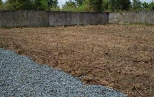 Bán đất mặt tiền ngay TOYOTA Bình Chánh , thổ cư , SHR xây dựng tự do