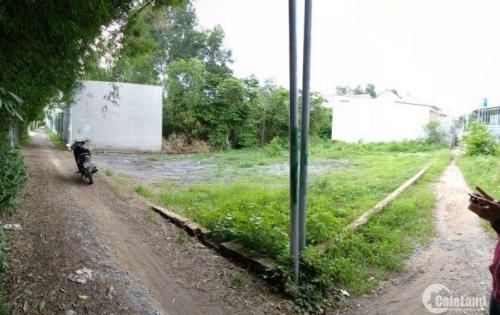Cần ra đi lô đất Thổ Vườn gần phà Cát Lái giá rẻ