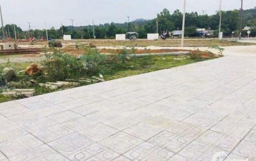Bán đất ngay mặt tiền cây thông ngoài, giá 1tỷ5/nền,SHR,quy hoạch 100% đất thổ cư